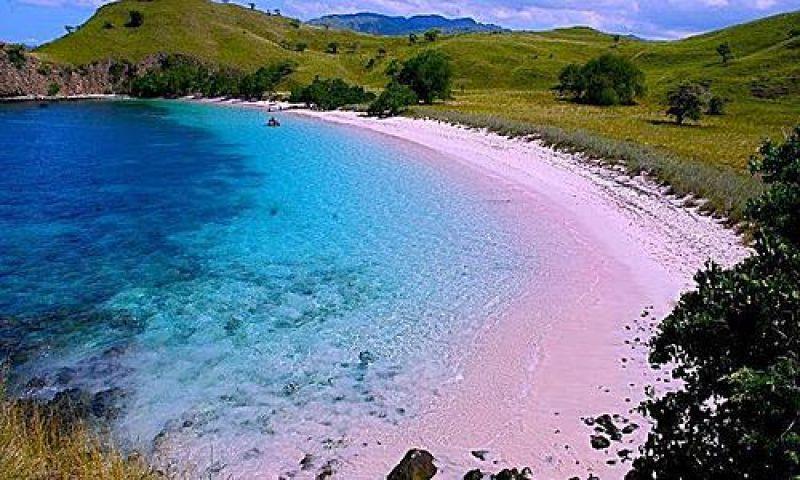 Lombok en liberté !