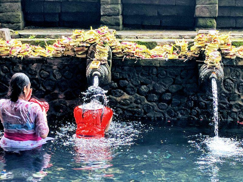 Rizières, sources sacrées et culture Balinaise